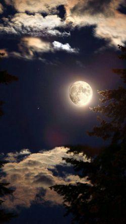 سلام رفقا شبتون بخیر..برا مدتی از خدمتتون مرخص میشم اما واقعا دلم برا تک تکتون تنگ میشه...شاید ی روزی برگشتم ...ماه مهمانی خدا رو هم پیشاپیش بهتون تبریک میگم ...منو از دعای خیرتون بی نصیب نکنید،، ،،،،خیلی دوستتون دارم حلالم کنید:))