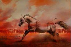 ذوالجناح حق داشت  آنقدر سرش را به زمین بكوبد تا بمیرد  امام حسین(ع)به او گفته بود :  ای اسب حلالم كن  به خاطر من سه روز است آب نخورده ای!؟