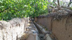 کوچه باغهای روستا