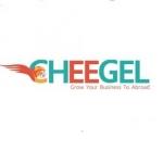 چیگل، اولین تجارت الکترونیک بین المللی کالای ایرانی
