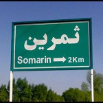 somarins