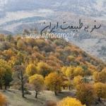 salehshahi