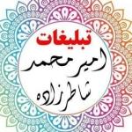 amir98mohammad