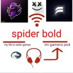 spider bold