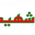 shahydan