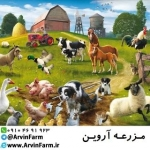 arvinfarm