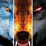 thewolfa3