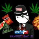 NooB_MLG