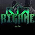 bigane