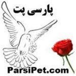 parsitop