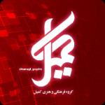 گروه فرهنگی و هنری کمیلیان