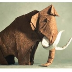 mammutdvd