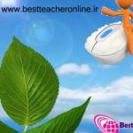 بهترین معلم آنلاین