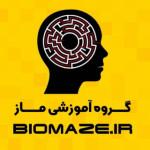 biomaze
