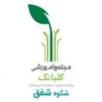 shokoh_shafagh