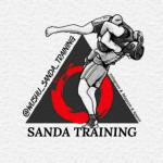 Wushu_Sanda_Training