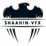 shaahin13