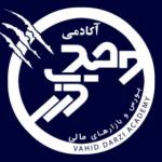 vahid_darzi