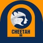cheetah.team