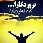 mohammadianali1378