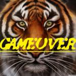 Amirhossien.GAMEOVER
