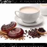 diet_therapy_ganoderma
