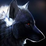 firewolf80