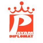 payam.diplomat