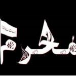 MohamdMehdiOmidvarDarab