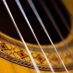 classicalguitar_keshmiri