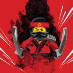 A reayle LEGO fan