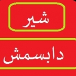علی صائبی (شیر دابسمش)